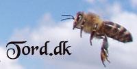 tord.dk alt om bier og honning